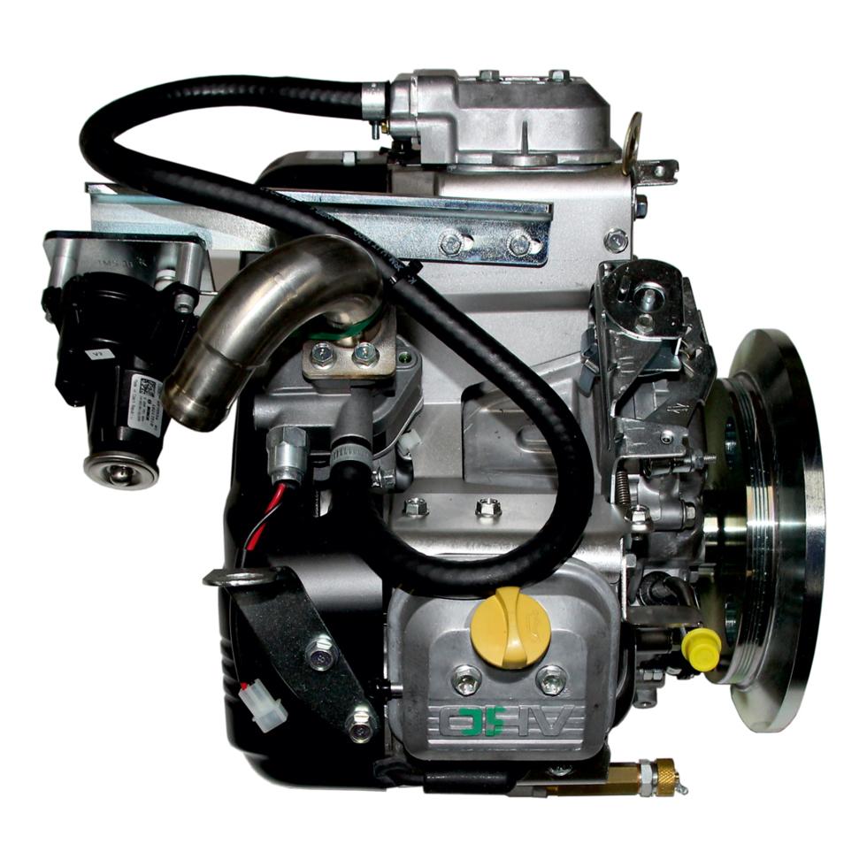 Wolf Gasmotor 2 Zyl., B&S, vormontiert für GTK-4 2269673